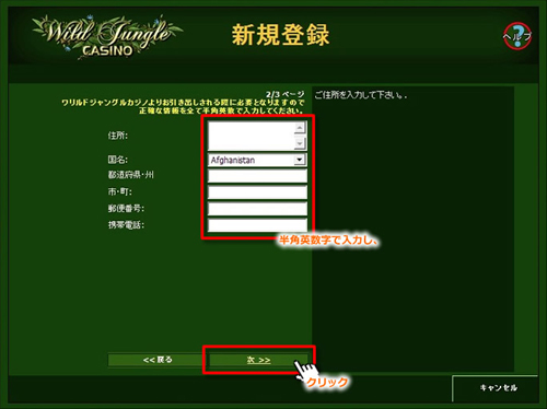Wild Jungle CASINO登録手順③
